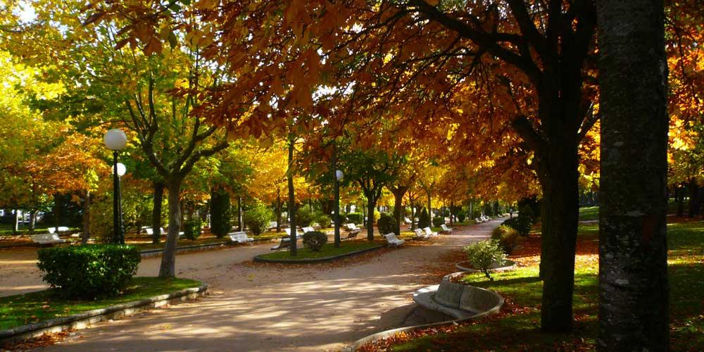 guiadesoria.es - La Dehesa. Alameda de Cervantes